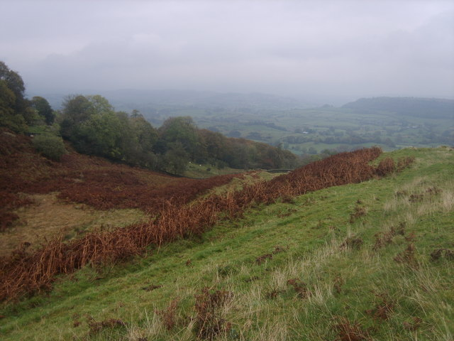 On Raven's Barrow - geograph.org.uk - 1545775