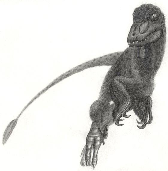 Soubor:Pyroraptor olympius.jpg