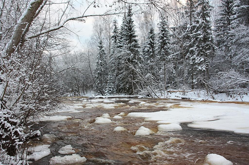 Rivière Amata dans le parc national Gauja en Lettonie. Photo de Liga Eglite.