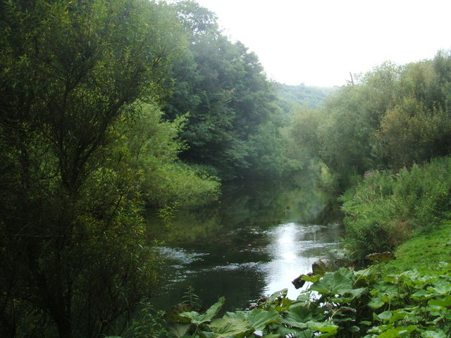 River Wye above Litton Mill - geograph.org.uk - 1449416