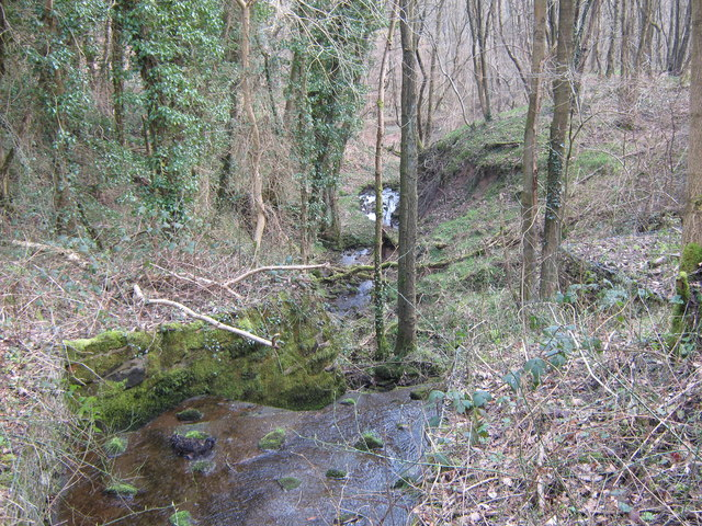 Stream in Lower Lady Park Wood, Consall Nature Park - geograph.org.uk - 1213664