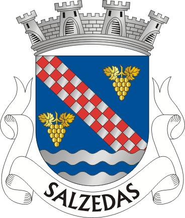 Ficheiro:TRC-salzedas.png