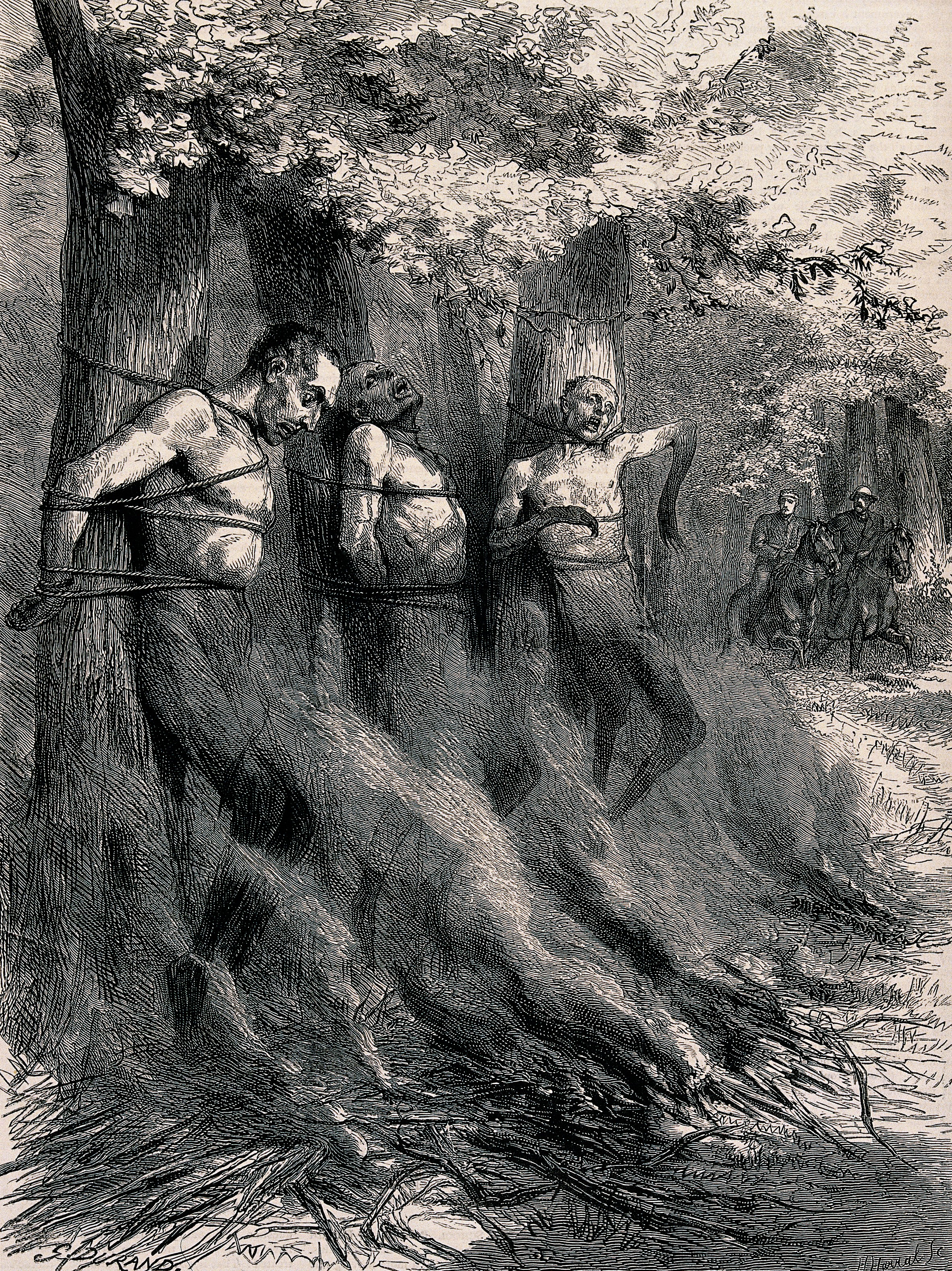 nude men tied to tree