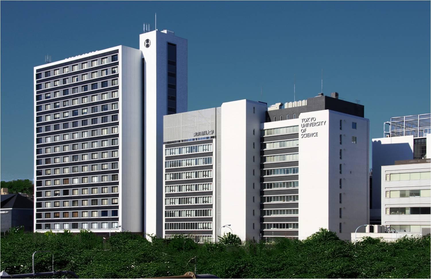 大学 鮫島 るい 近畿