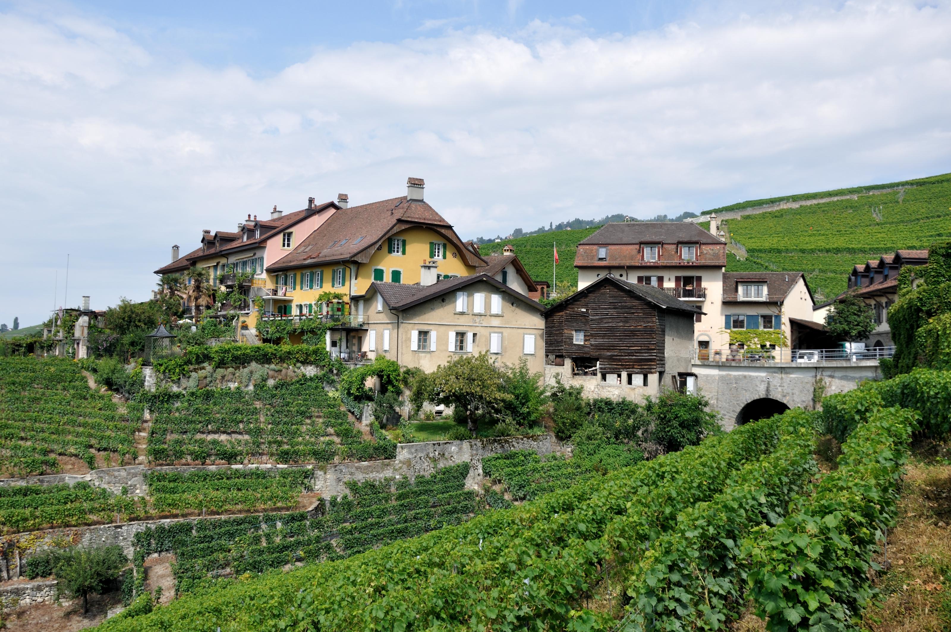 Lutry Switzerland  city images : Lutry Switzerland Related Keywords & Suggestions Lutry Switzerland ...