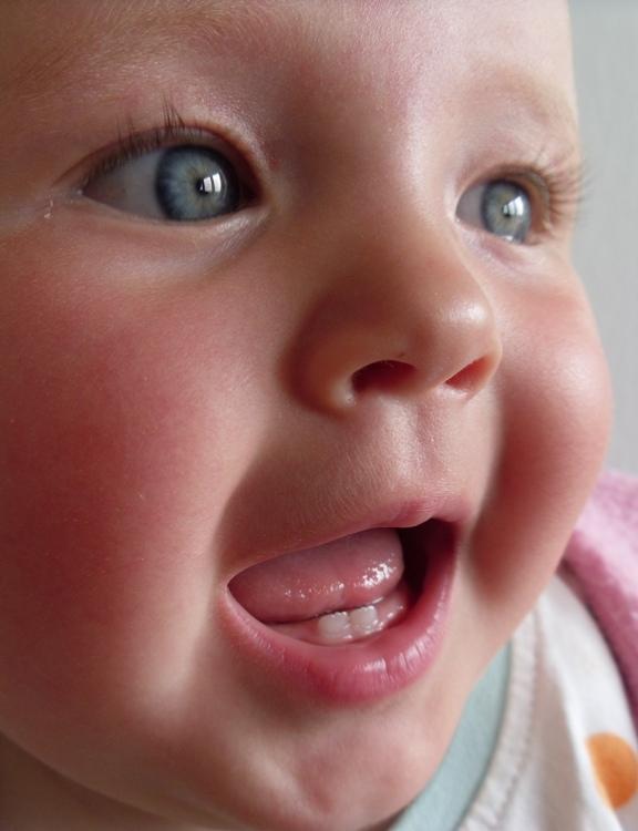 Baby-Zähne