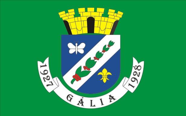 Bandeira de Gália