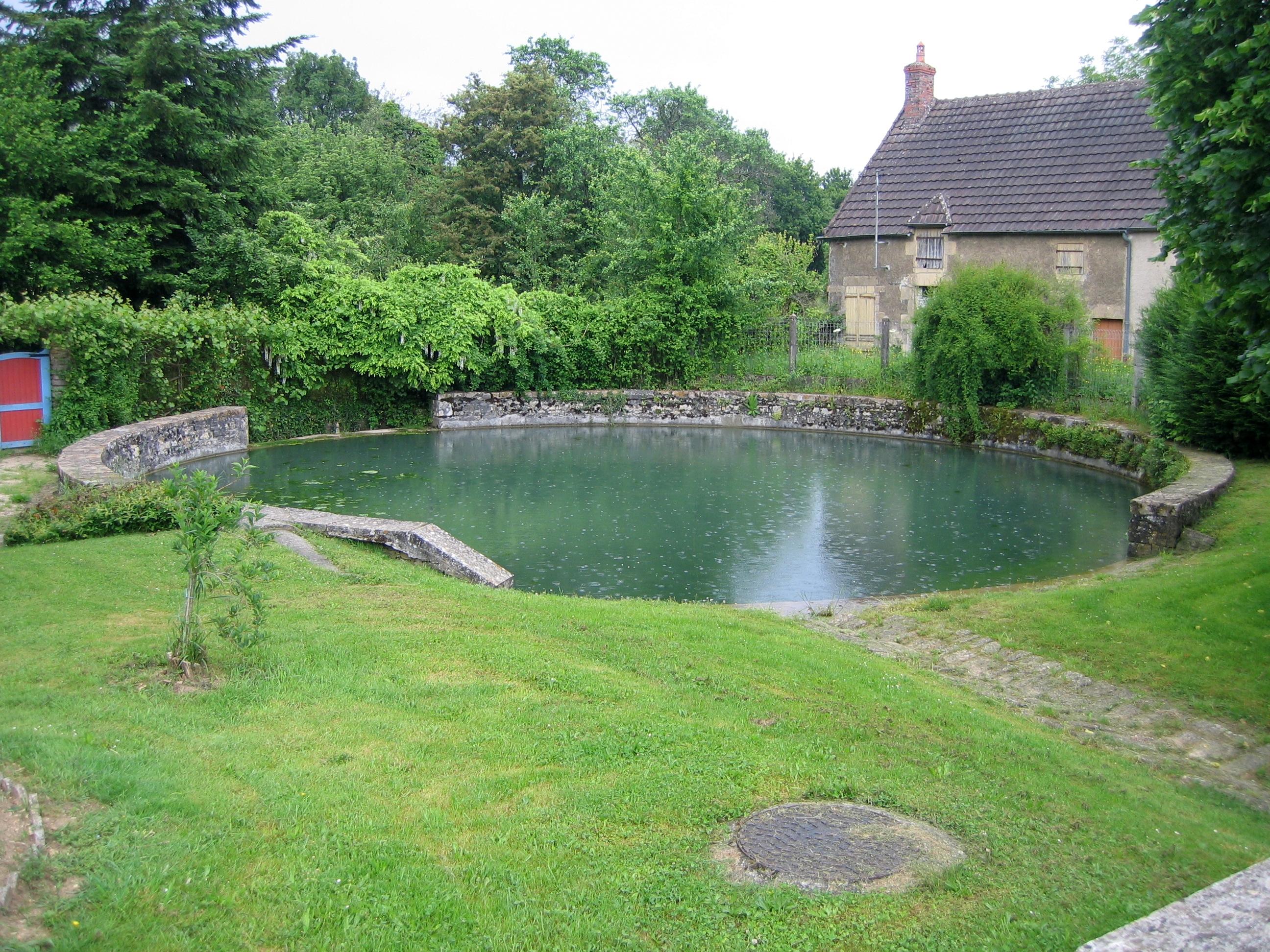Bassin japonais avec cascade lyon maison design - Petit jardin potager facile aulnay sous bois ...