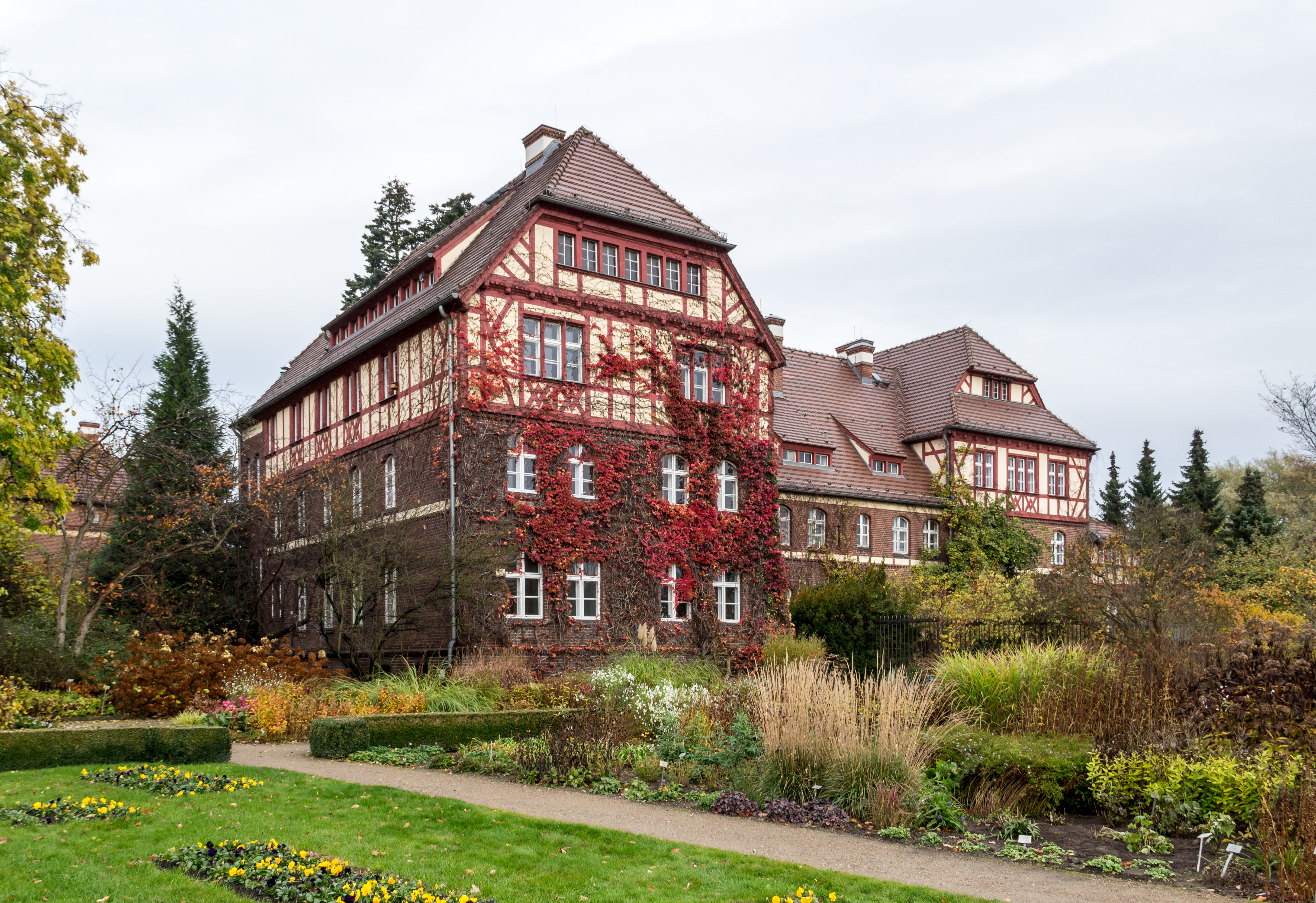 File:Berlin, Botanischer Garten -- 2013 -- 4689.jpg - Wikimedia Commons
