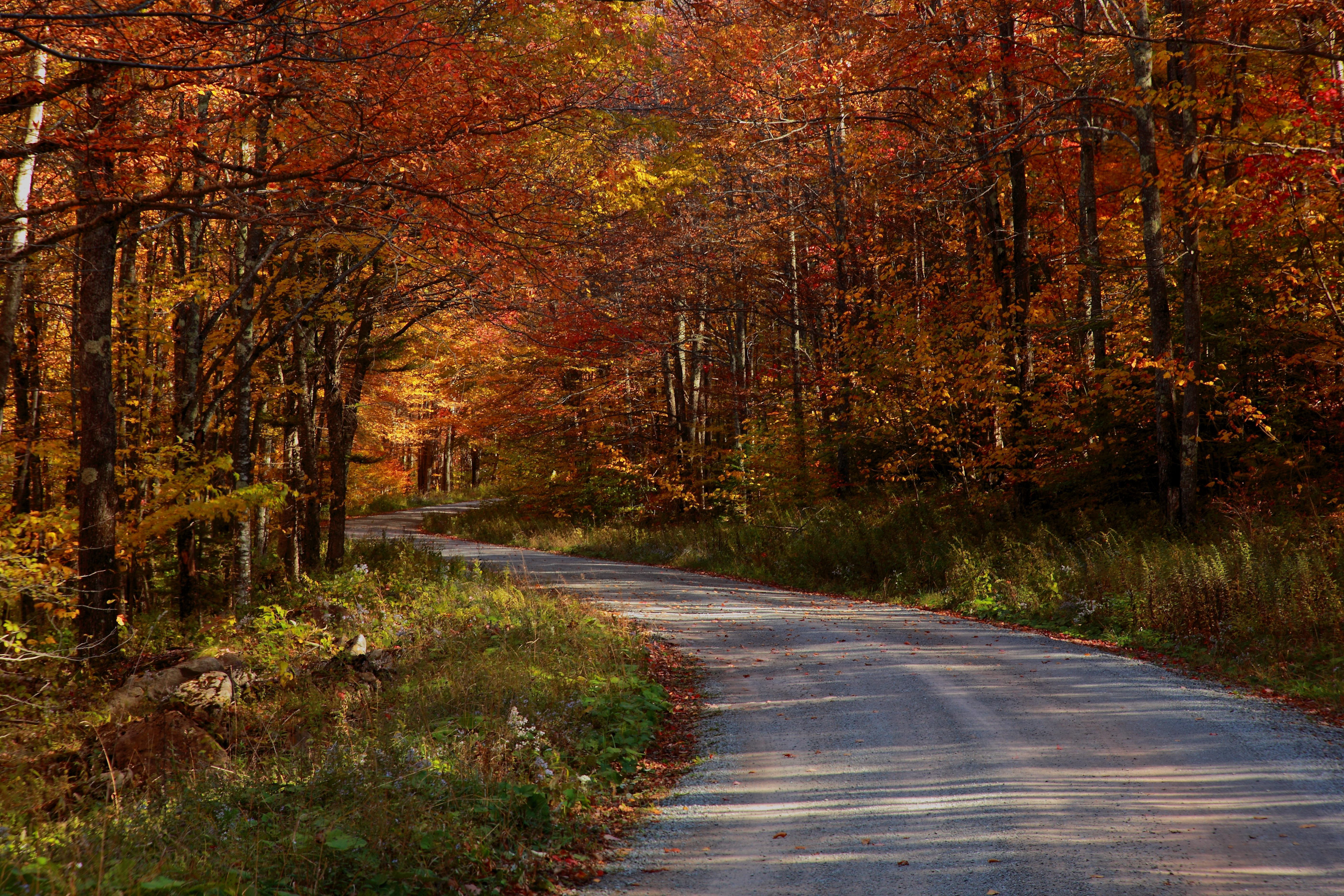 File country roads take me home west virginia for West fall