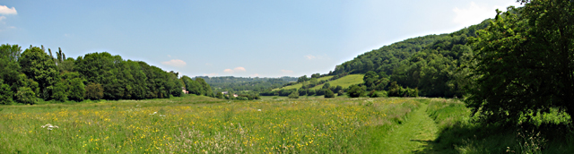 Field by Tintern Old Station - geograph.org.uk - 204768