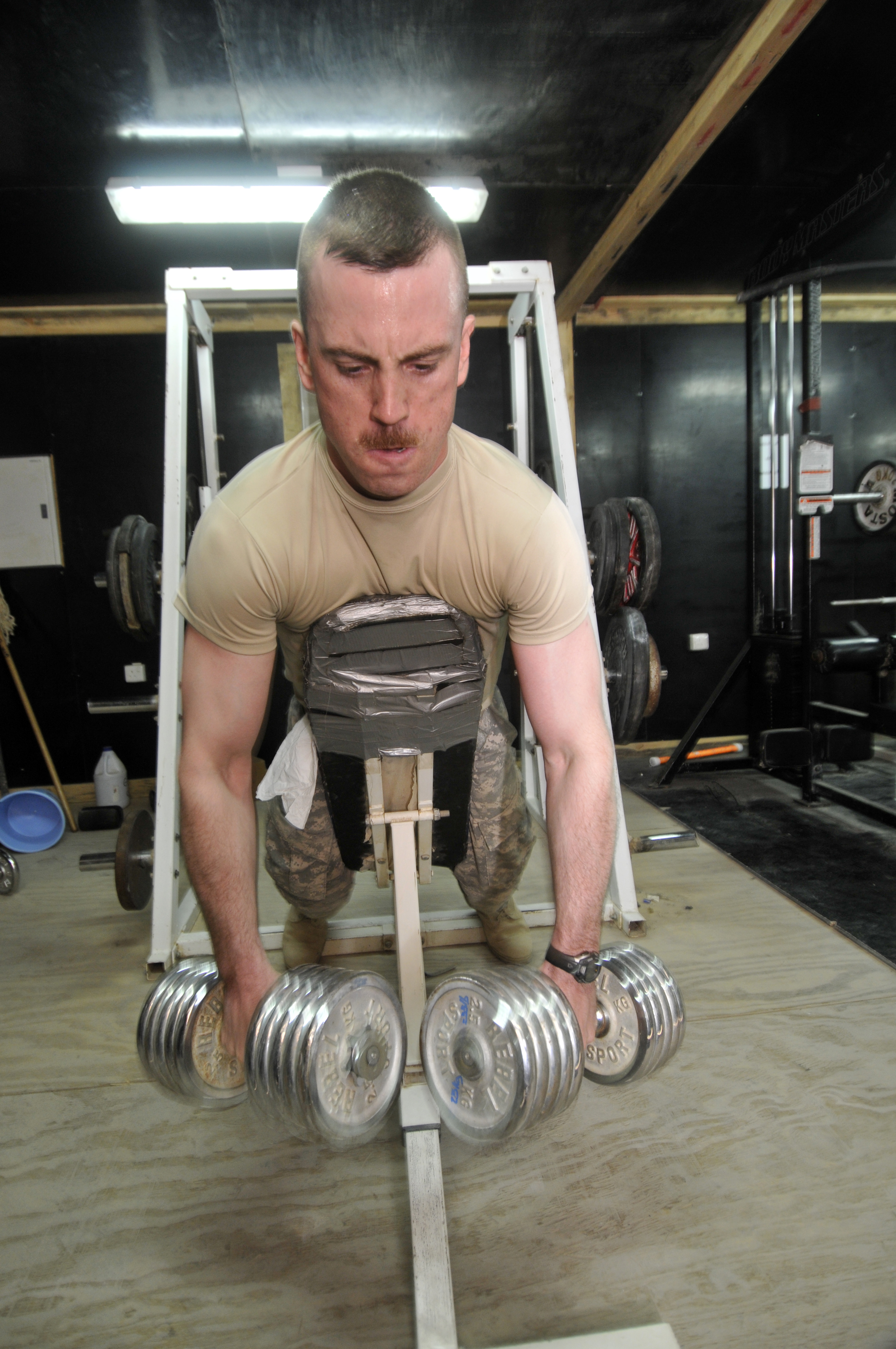 creatine and glutamine for weightlifting