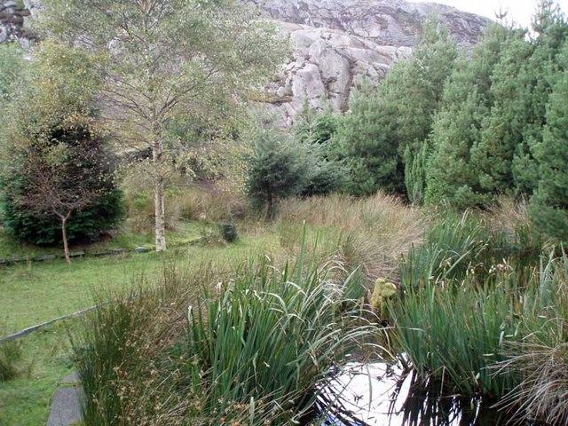Japanese water garden - geograph.org.uk - 645496