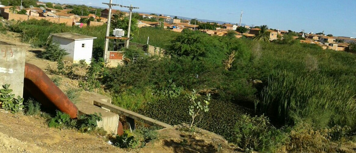 Xique-Xique Bahia fonte: upload.wikimedia.org