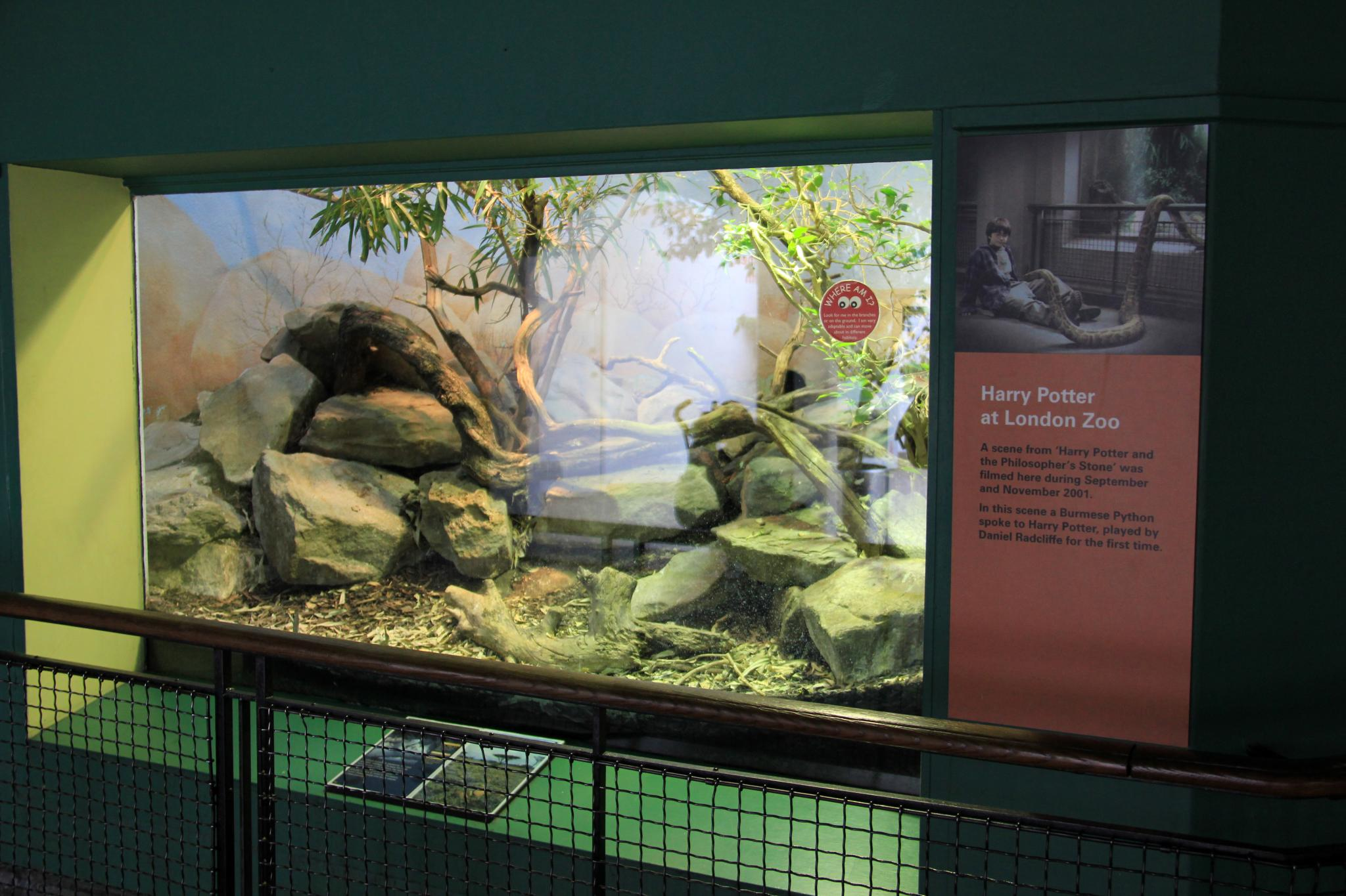 File London Zoo Reptile House 8727029288 Jpg Wikimedia