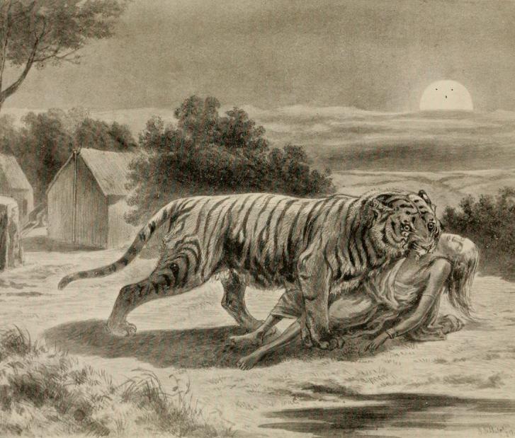 בעלי חיים אוכלי אדם ויקיפדיה