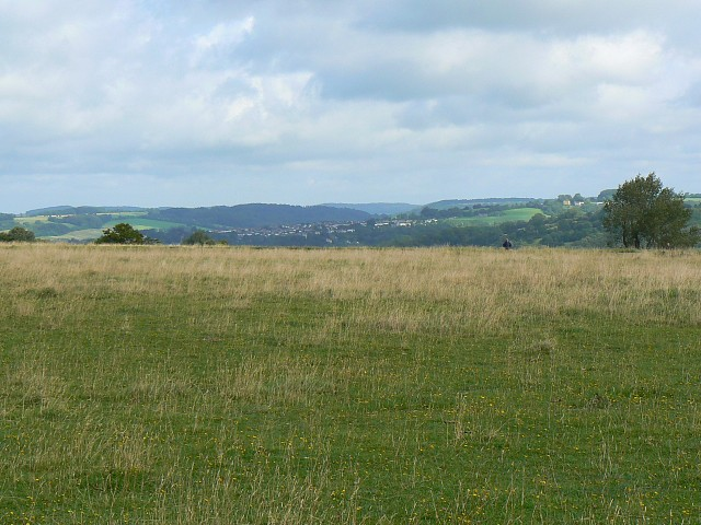 Minchinhampton Common, near Minchinhampton - geograph.org.uk - 930988