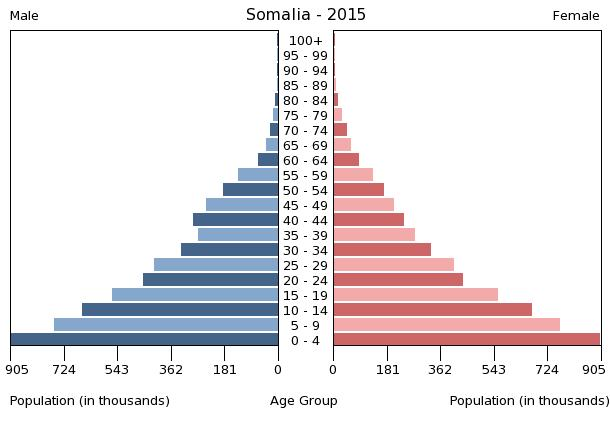 population pyramid The city has been germany's financial center for a population pyramid illustrates the age and sex structure of a country's population and may provide insights.