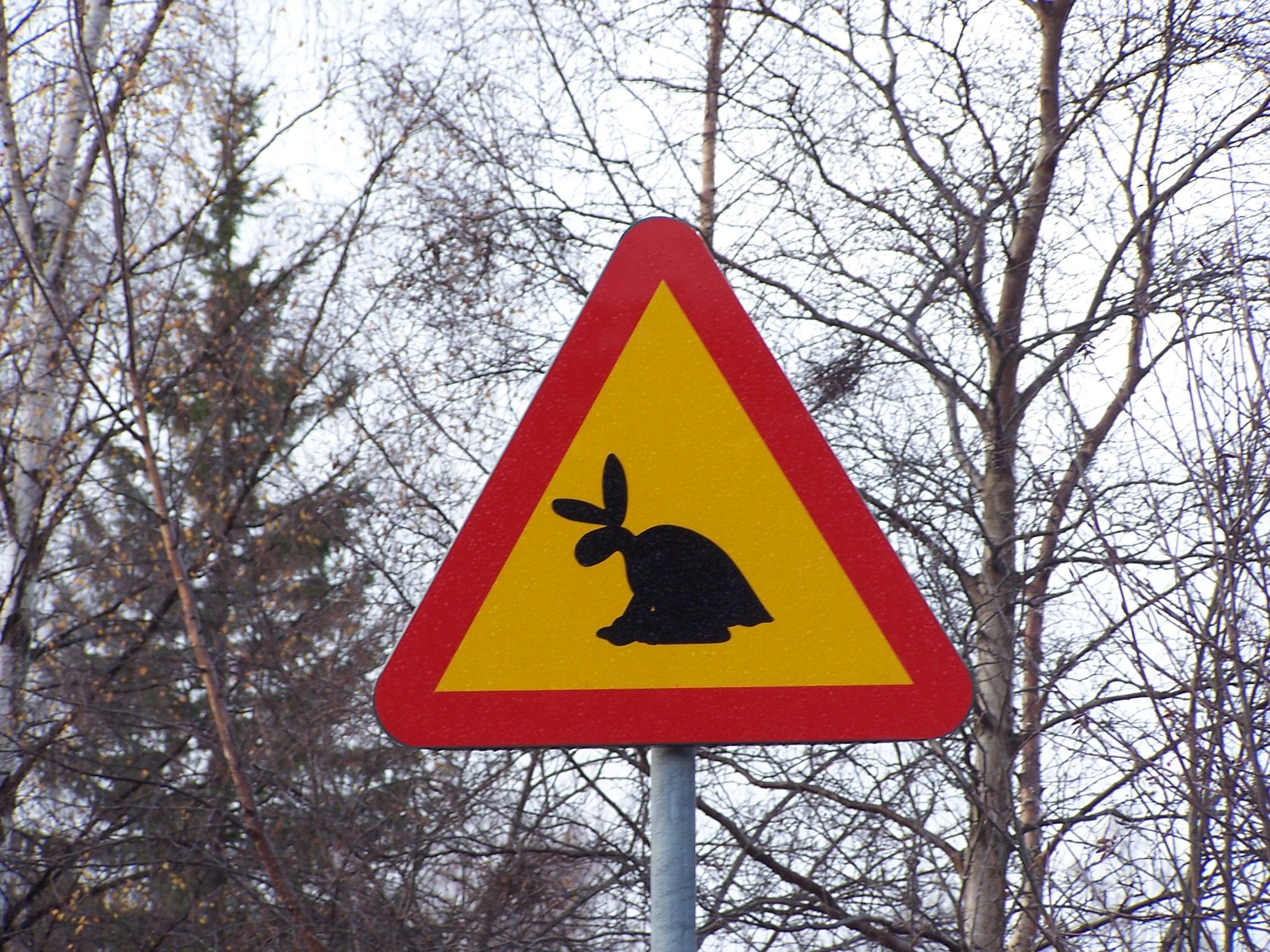 skvader_sign.jpg