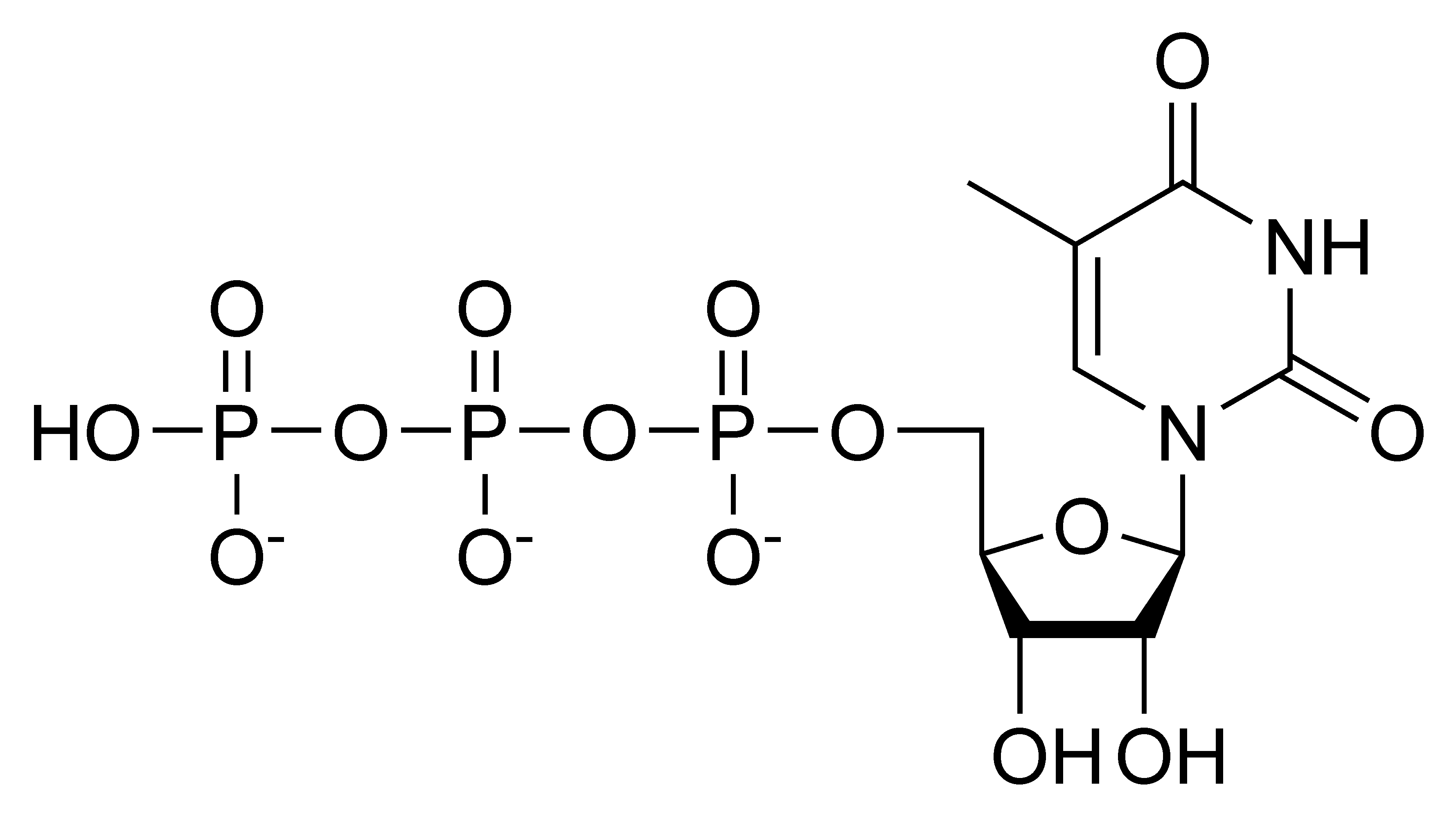 Chemical structure of thymidine triphosphate