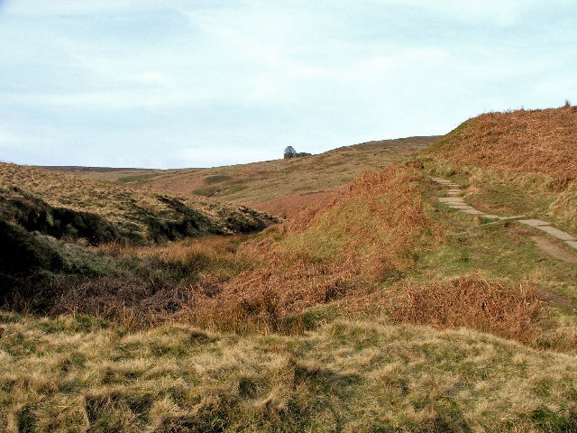 File:The Climb to Top Withens. - geograph.org.uk - 393405.jpg