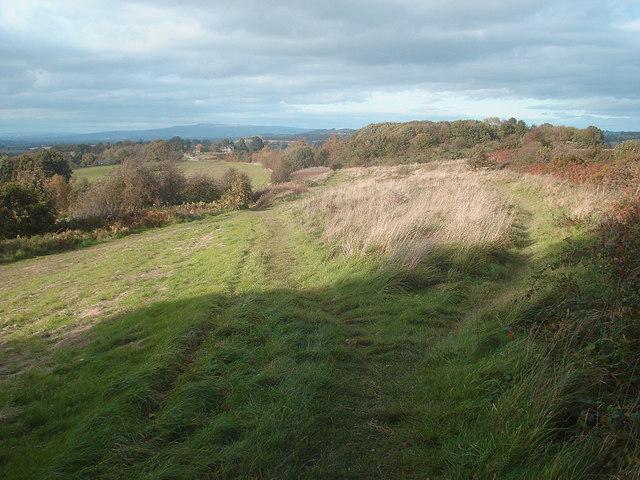 Track across Bromyard Downs - geograph.org.uk - 1132638