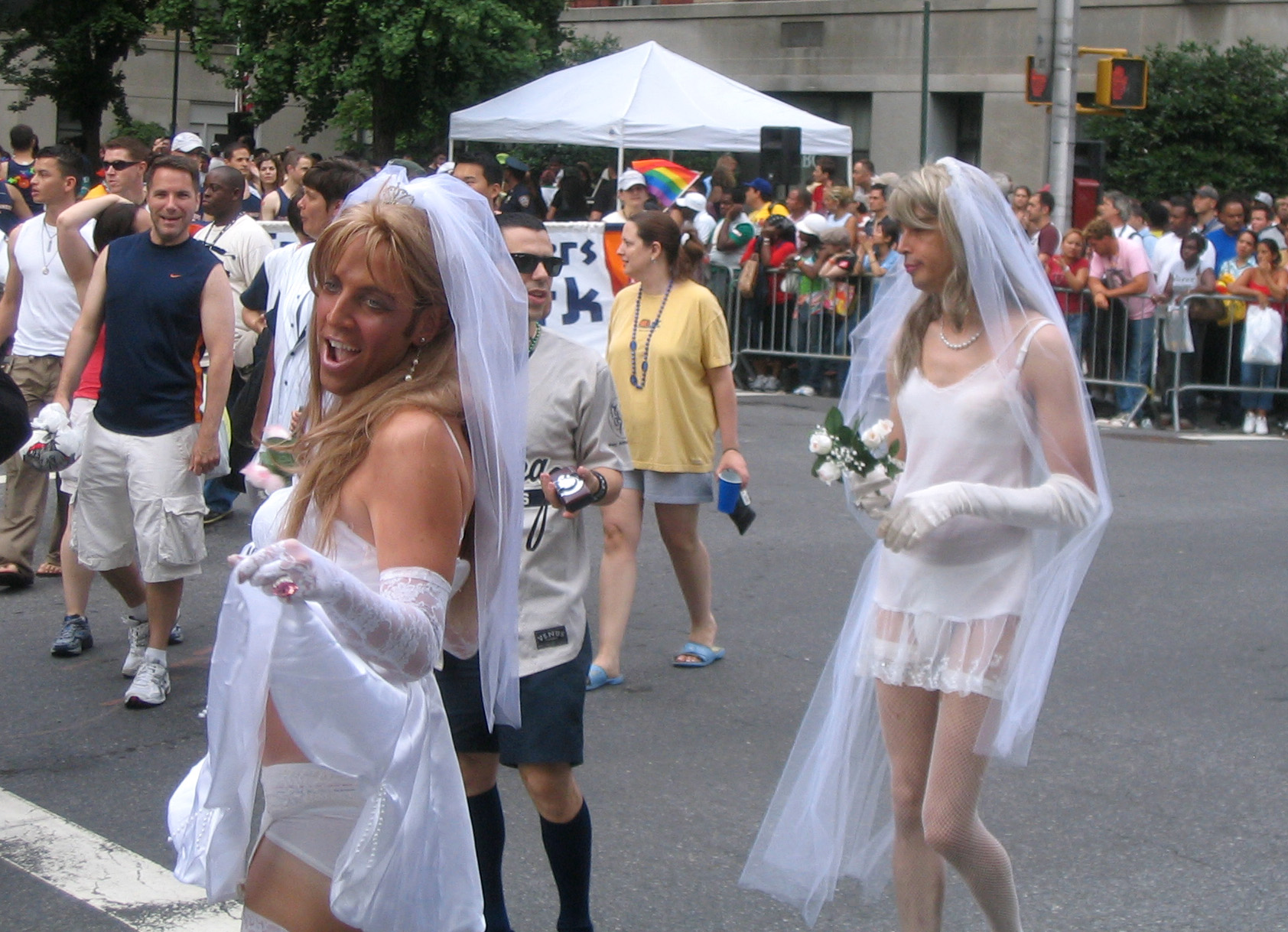 Gay marriage laws passed