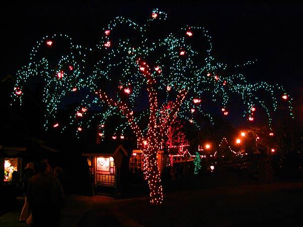Christmas Holiday Lights