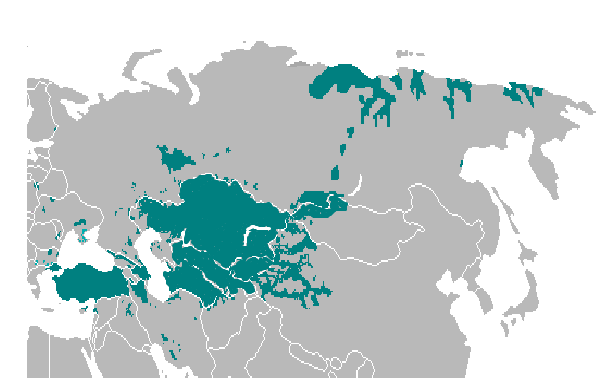 File turkic languages location wikimedia commons for Location b b france