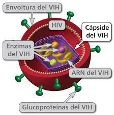 como evitar el vih sida wikipedia