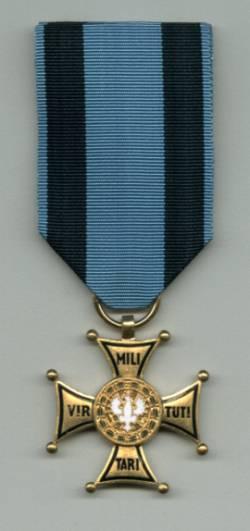 Порошенко вручил Звезду Героя Украины полковнику Игорю Гордийчуку, командовавшему боями по занятию Саур-Могилы - Цензор.НЕТ 6628