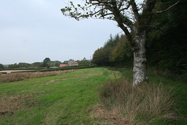 Witheridge, Two Moors Way - geograph.org.uk - 244769
