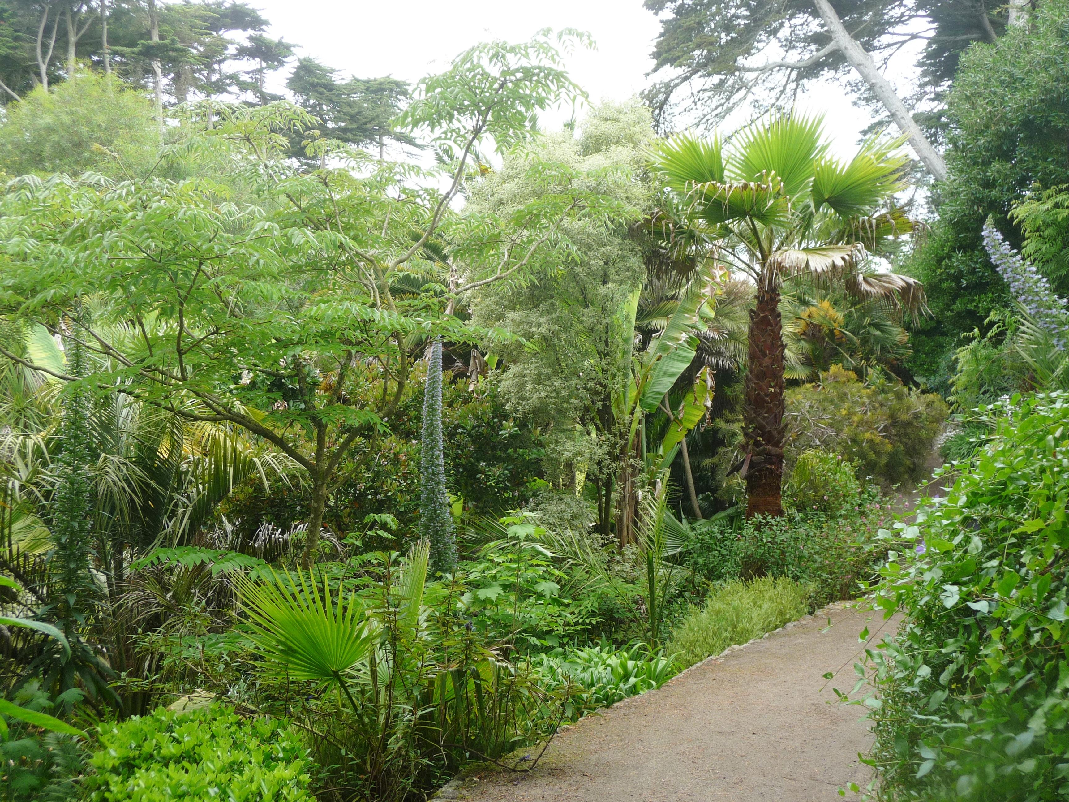File le de batz 034 jardin georges delaselle jpg for Jardin georges delaselle