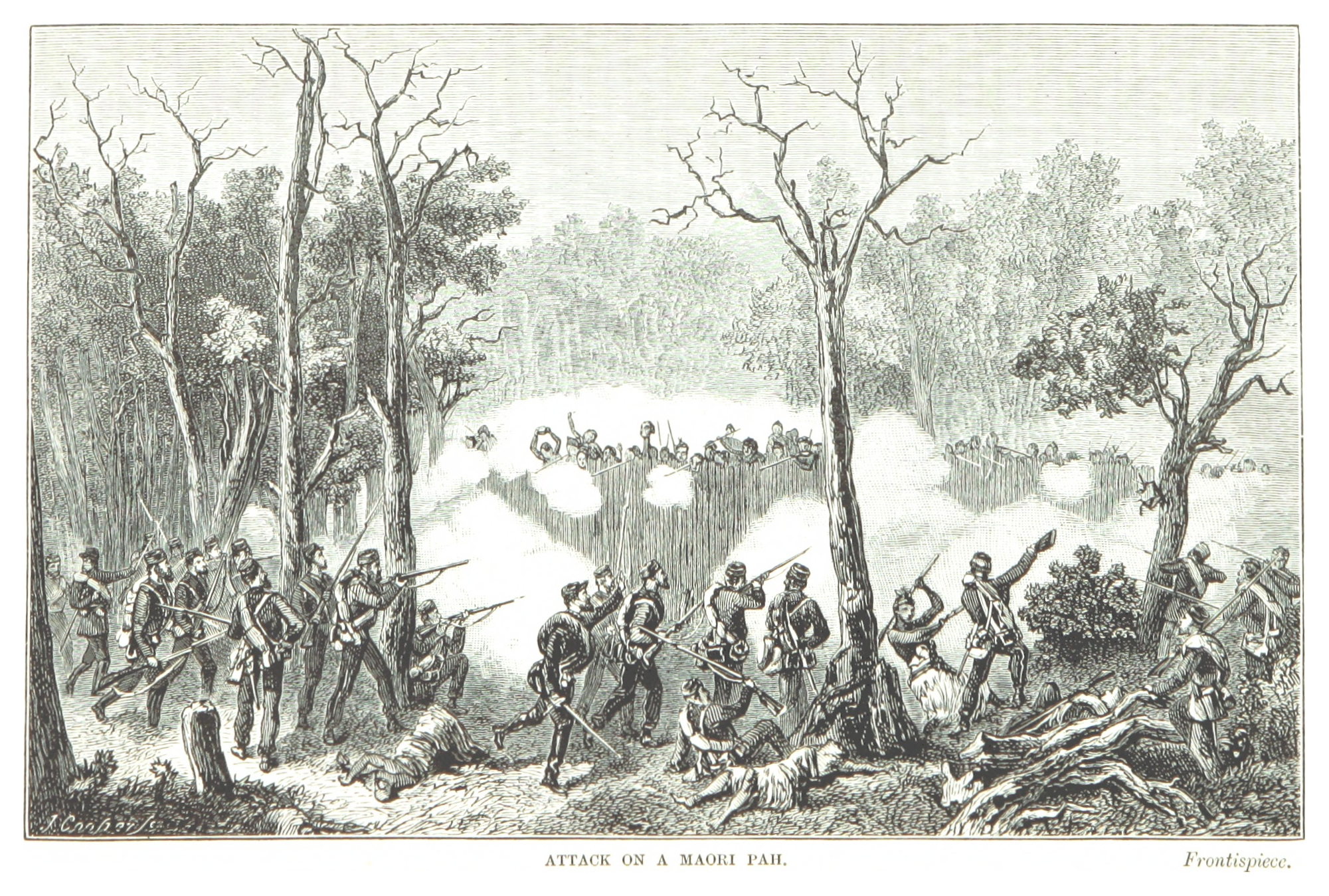 ALEXANDER(1873) p010 ATTACK ON A MAORI PAH.jpg