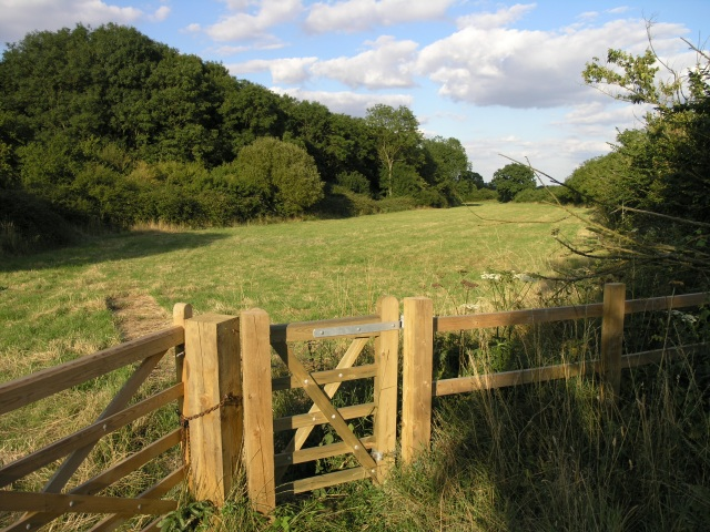 A Field near Brill - geograph.org.uk - 35477