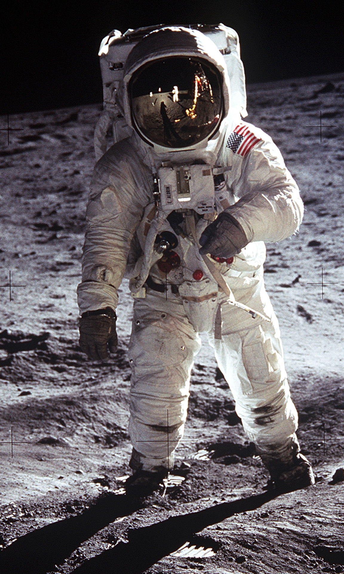 Image of Buzz Aldrin from Wikidata