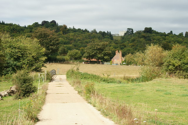 Along the Path in Norbury Park, Surrey - geograph.org.uk - 1504099
