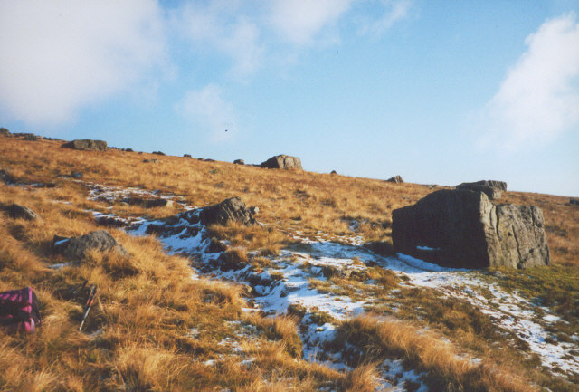 Boulders on the western slope of Great Whernside - geograph.org.uk - 789278