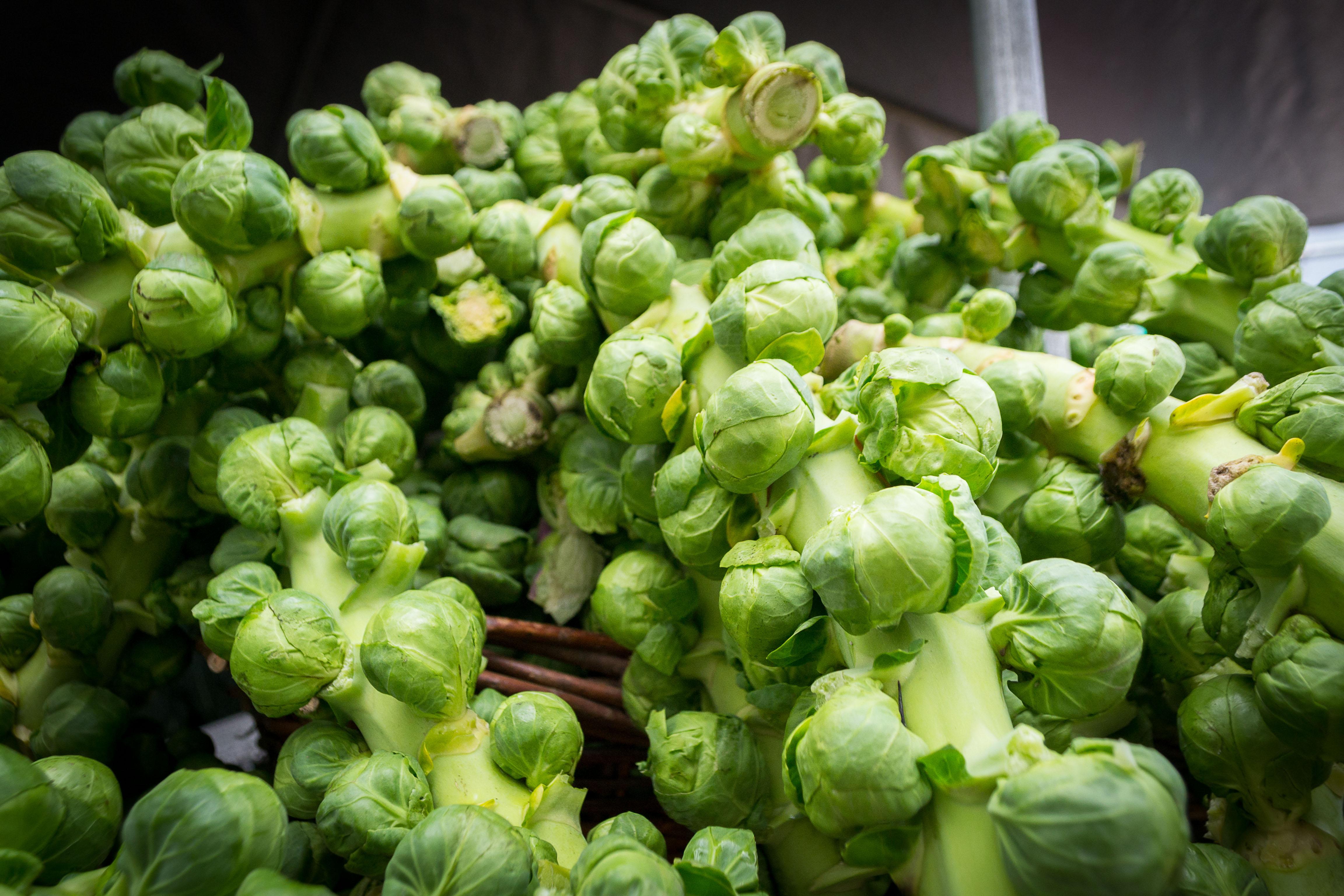 Brussels sprouts recipe dishmaps - Culture du choux de bruxelles ...