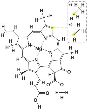 строение хлорофилла