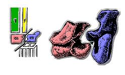 CrocNormal01