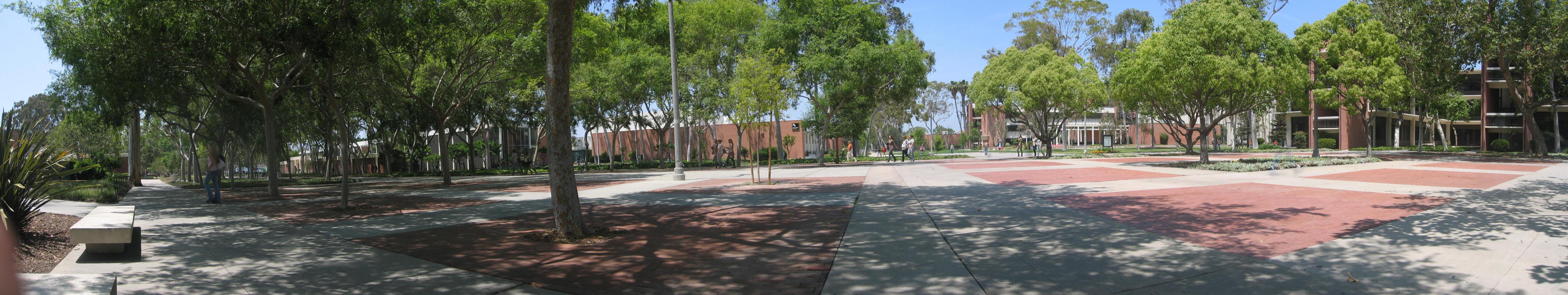 Cal State Long Beach Nursing Transfer
