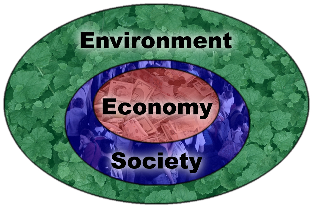 ENVIRONMENT AND SOCIETY A Critical Introduction Second Edition 2014 Robbins Hint