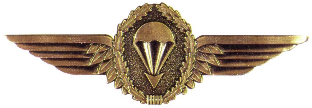 Fallschirmspringerabzeichen der Bundeswehr in Bronze.jpg