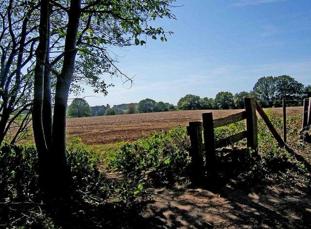 Farmland adjacent to Shrawley Wood - geograph.org.uk - 1484879