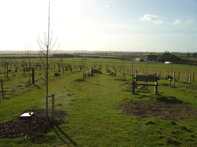 File:Green Burial Ground - geograph.org.uk - 710571.jpg