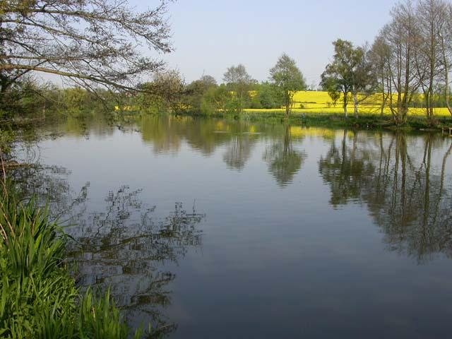 Grendon Quarter Pond - geograph.org.uk - 169452