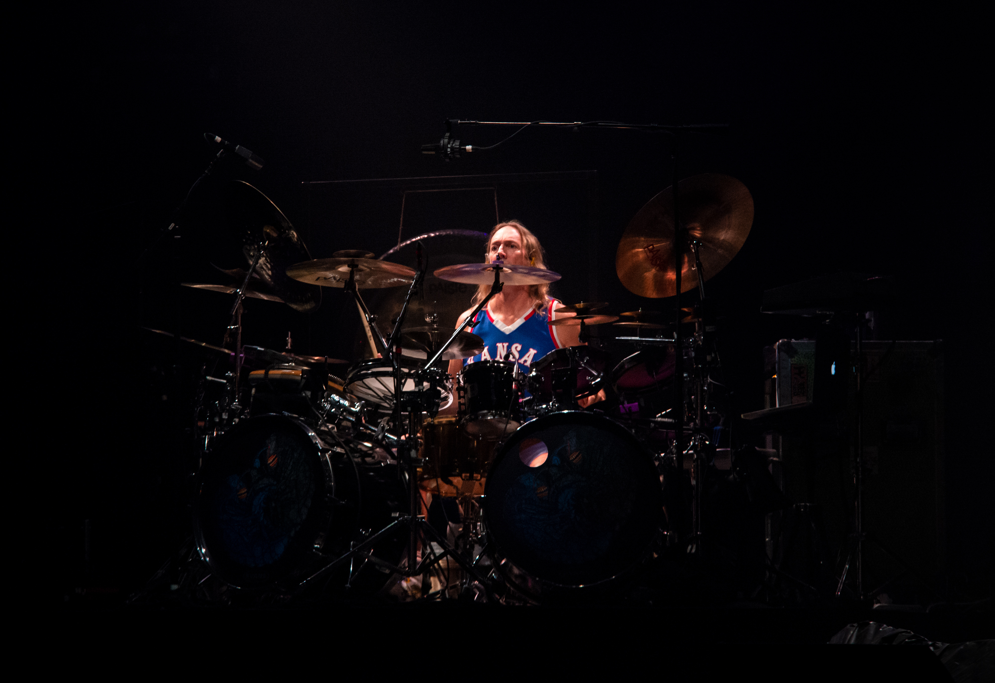 Picture of a band or musician: Danny Carey