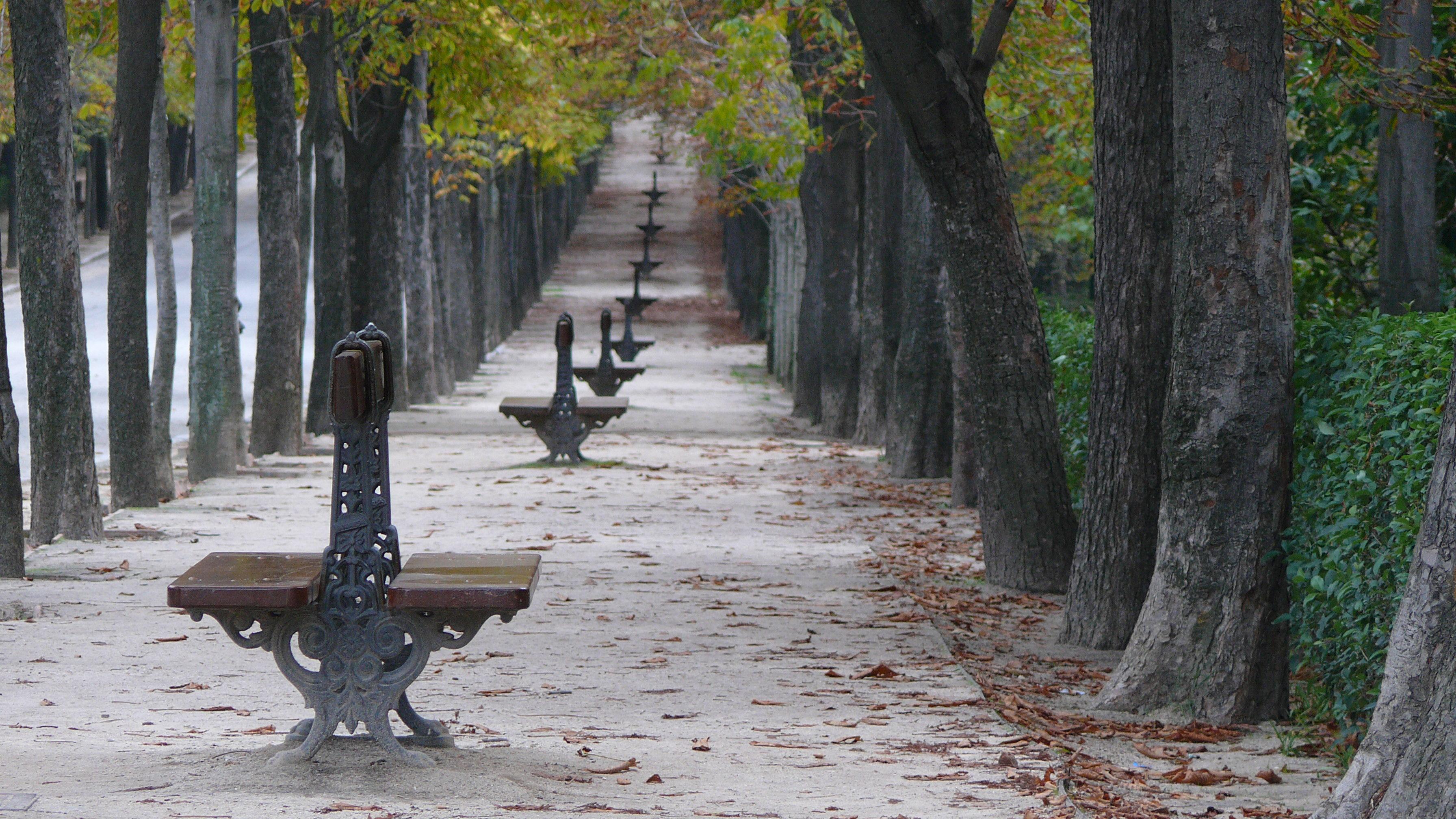 file jardines del buen retiro madrid wikimedia