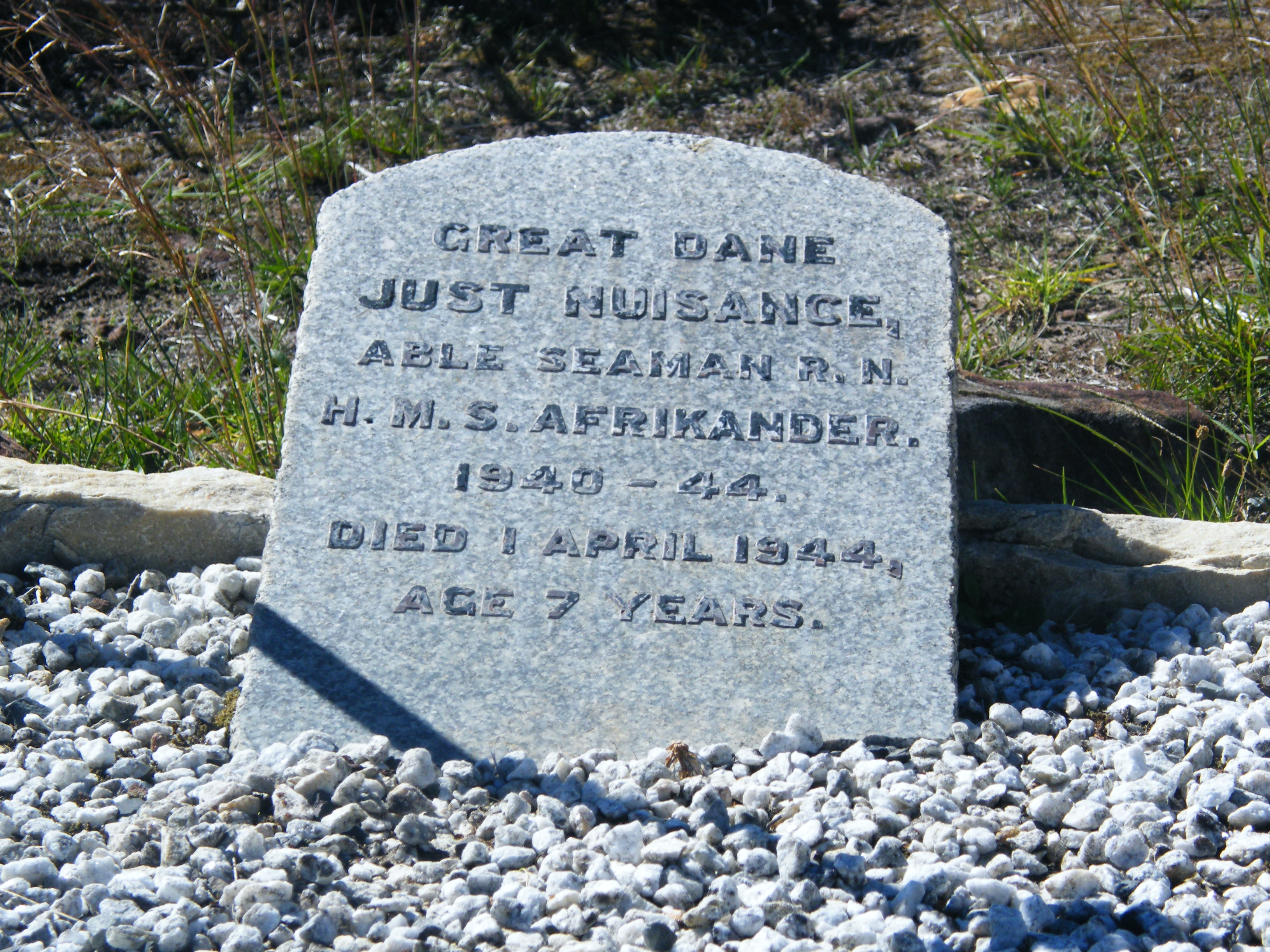 Seaman The Dog Grave
